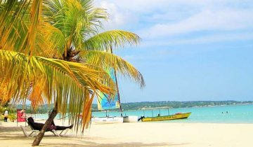 Traveling Book Club Jamaica